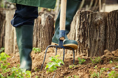 spring-garden-concept-gardener-doing-work-hay-fork-work-54509296